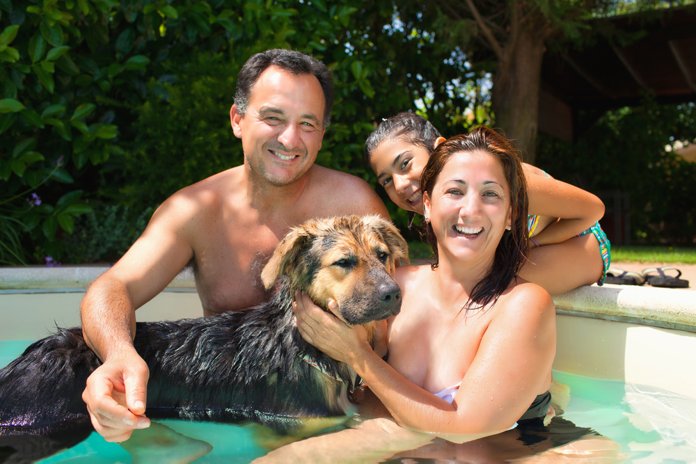 Enjoying a Pool with Family and Pets